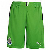 2013-14 Newcastle Home Goalkeeper Shorts (Green) - Green