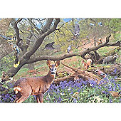 Bluebell Wood Puzzle