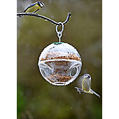 Crocus Globe Bird Feeder
