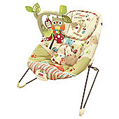 Fisher-Price Woodsy Friends Baby Bouncer