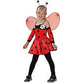 Ladybug - Child Costume 8-9 years