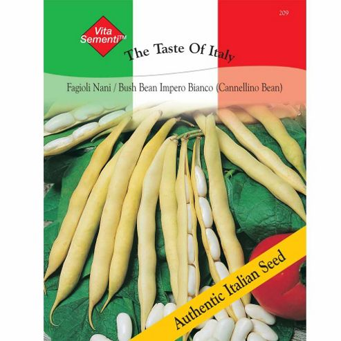 Dwarf Bean 'Impero Bianco' (Cannellini Bean) - Vita Sementi® Italian Seeds - 1 packet (100 bean seeds)