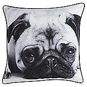 Pug Photograph Cushion