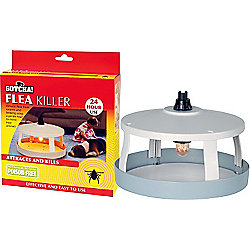 Maplin Flea Killer