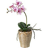 Parlane Artificial Lilac Purple Orchid Spray In Ceramic Crackle Glazed Plant Pot
