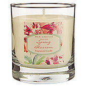 Wax Lyrical Blossom Spring Boxed Candle