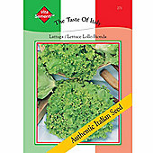 Lettuce 'Lollo Bionda' (Loose-Leaf) - Vita Sementi® Italian Seeds - 1 packet (4000 lettuce seeds)