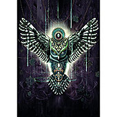 Wise Owl - Chris Saunders Puzzle