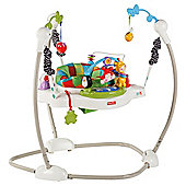 Fisher-Price Discover 'N Grow Jumperoo Bouncer