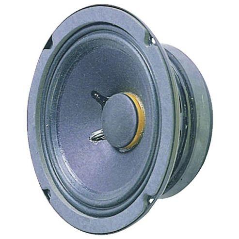 6-Inch (150mm) 100W Speaker