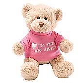 Gund 29cm I Am The Big Sister Plush Teddy Bear