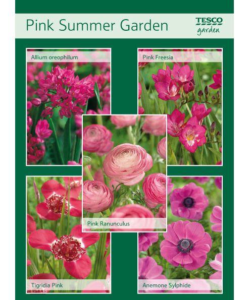 Pink Summer Garden