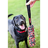 EZYDog Beaver Tail - Small