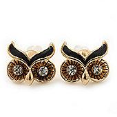 Children's/ Teen's / Kid's Small 'Owl' Stud Earrings In Gold Plating - 11mm Width