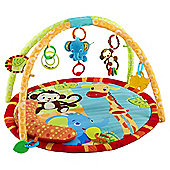 Brightstart Safari Tales Activity Gym-DUAL SOURCED DUPLICATE