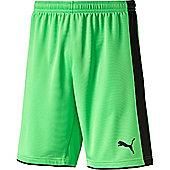 Puma Tournament Goalkeeper Short - Green