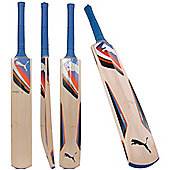 Puma Iridium Force Cricket Bat Premium Kashmir Willow Size Harrow