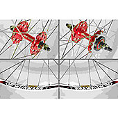 Momentum Solo 700c Wheel: Red Set.