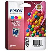 Epson Singlepack Colour T029 DURABrite Ink
