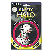 Ancol Safety Halo (58Cm)