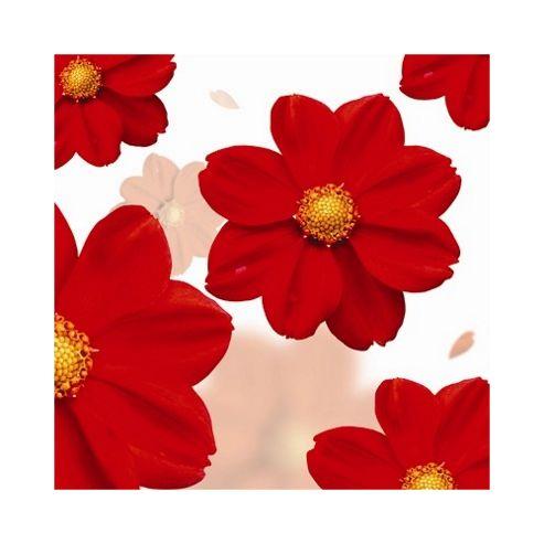 Pharmore Ltd Flowers Wall Art - 60cm x 60cm