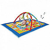 Taf Toys 3-in-1 Curiosity Gym