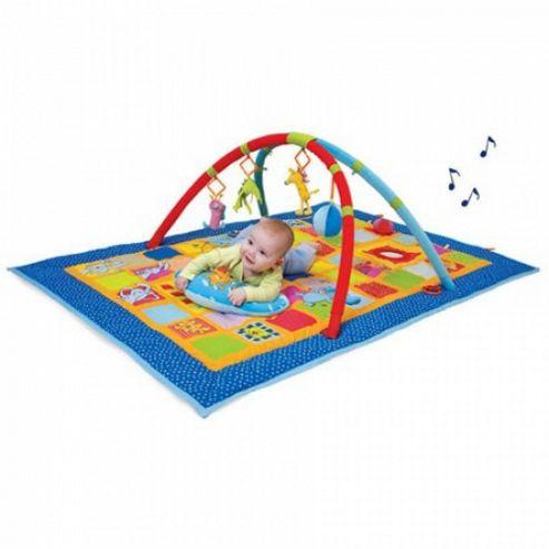 Taf Toys 3-in-1 Curiosity Gym