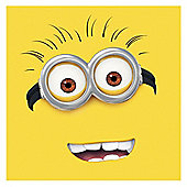Despicable Me Cushion