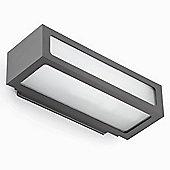 Faro Natron One Light Outdoor Wall Lamp in Dark Grey