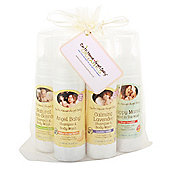 Earth Mama Angel Baby Family Wash Bundle