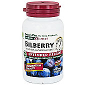 Bilberry 100mg Extended Release
