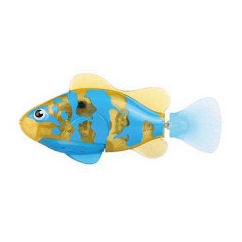 Robo Fish Tropical - Bicolor Angelfish