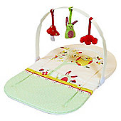 East Coast Twilight Changing Mat with Play Arch