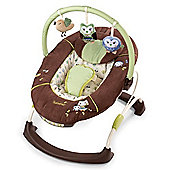 Summer Infant Cuddly Owls Bouncer