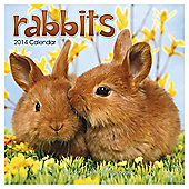 Rabbits 2014 Wall Calendar