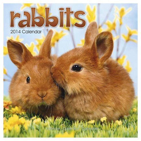 Rabbits 2014 Wall Calendar