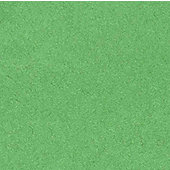 Canson Tissue Paper - Bright Green