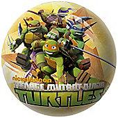 Teenage Mutant Ninja Turtle Playball - Outdoor and Sports