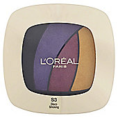 L'Oréal Color Riche S3 Disco Smoking