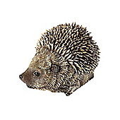 Tomcham Res12 Spike Hedgehog Baby
