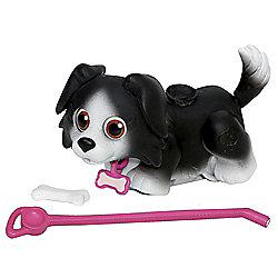 Pet Parade Single Puppy Pack - Border Collie