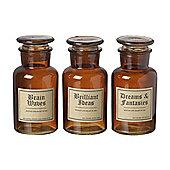 Parlane Set of Three Brown Glass Ideas Bottles Decoration - 14cm x 6.5cm