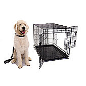 Liberta Celtic Dog Crate