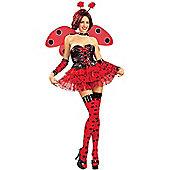 Adult Ladybird Costume