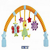 Taf Toys Musical Arch n Touch