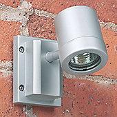 Endon Lighting Outdoor Wall Spot Light