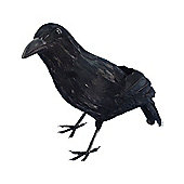 Feathered Crow