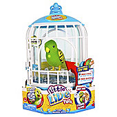 Little Live Pets Birds Cage Friendly Frankie