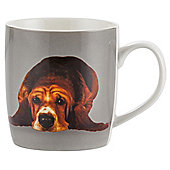 Tesco Single Porcelain Pet Mug, Black