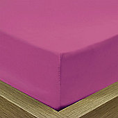 Julian Charles Percale Fuchsia Luxury 180 Thread Count Fitted Sheet - Single
